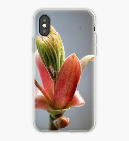 Budding Maple - Memories of Spring iPhone Case