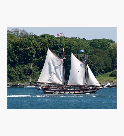 Tall Ship Sailing Past Newport, RI Photographic Print