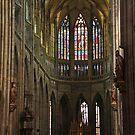Prague St. Vitus Cathedral Nave by Elena Skvortsova