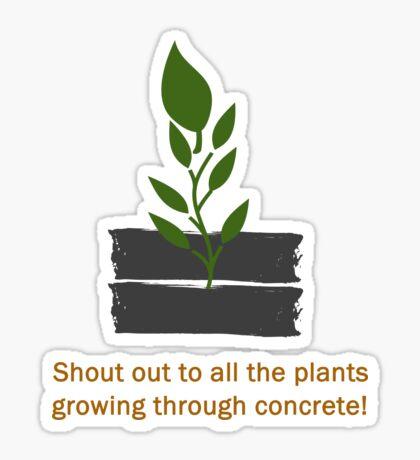 Plants Through Concrete Sticker