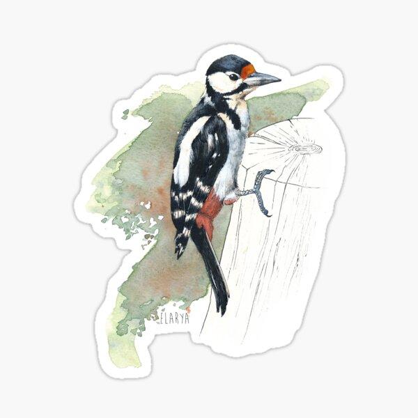 Pic Epeiche Sticker