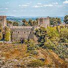 Castillo de San Servando by FelipeLodi