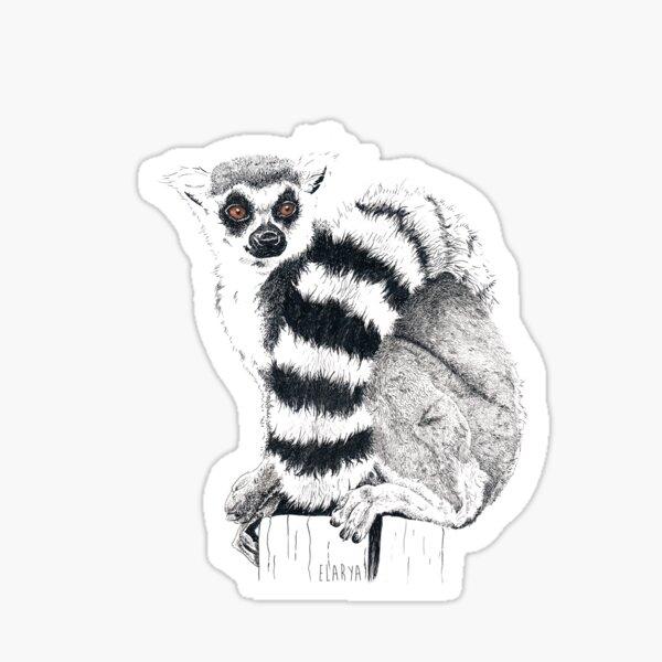 Un Lémurien Sticker