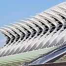 Museum of Science by FelipeLodi
