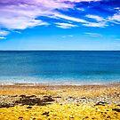 Golden Rock Beach by FelipeLodi