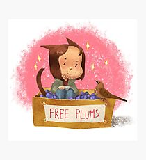 Free plums Photographic Print