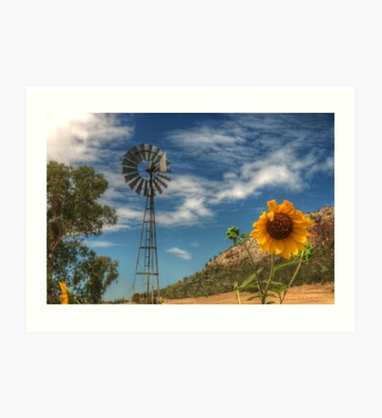 Country Sunshine Art Print