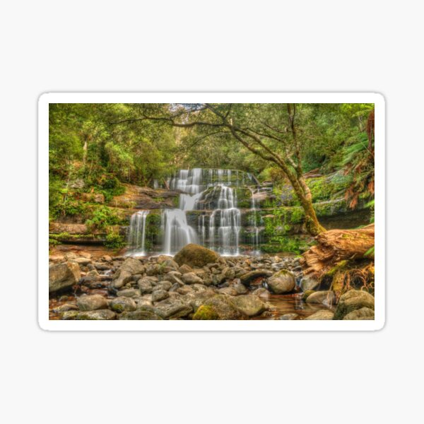 Liffey Falls in Tasmania Sticker
