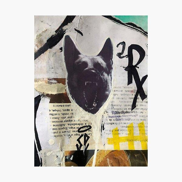 Hauling dog | Graffiti wall | Pop art | Street-art aesthetics Photographic Print