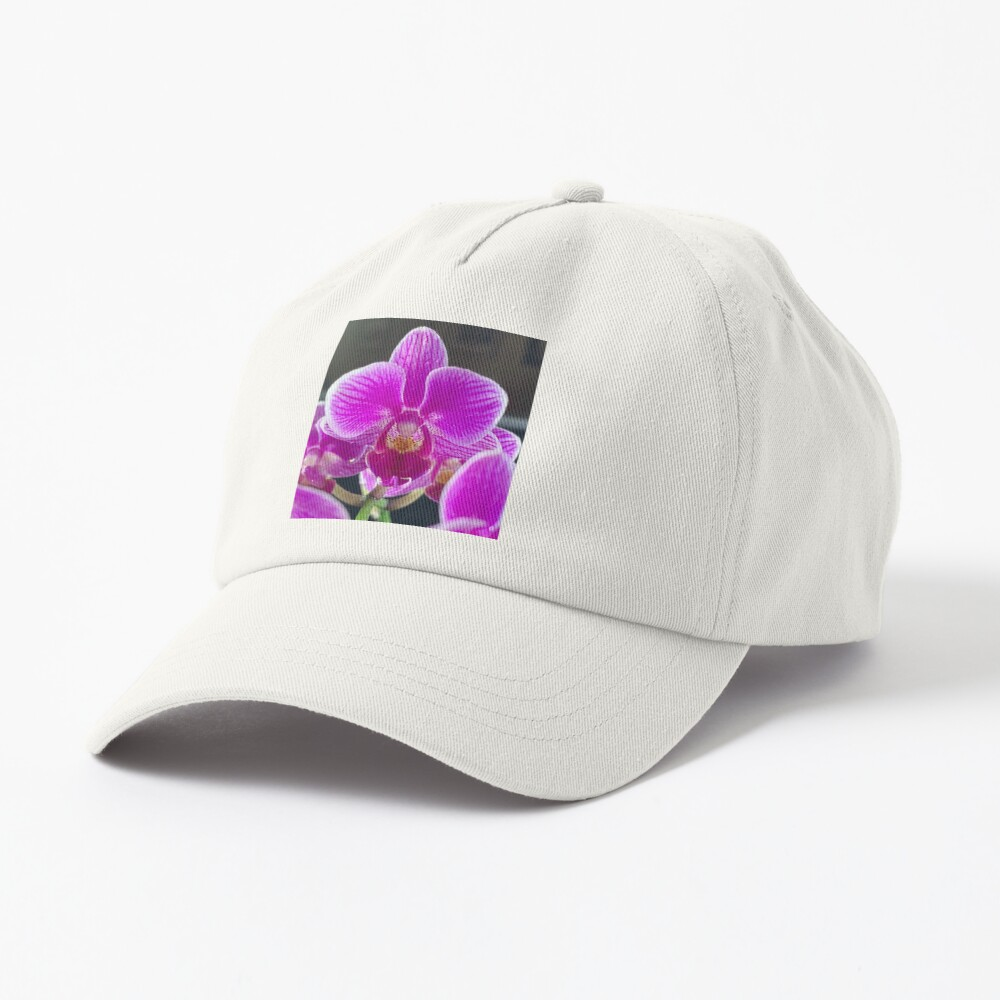Purple Orchid By Yannis Lobaina Cap