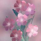 Pink Smiles by Stephanie Rachel Seely