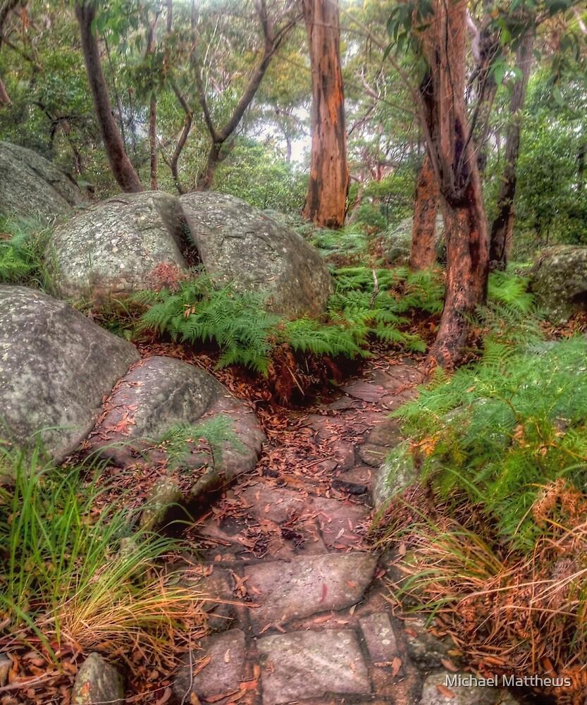 Split Rock at Oatley Park by Michael Matthews