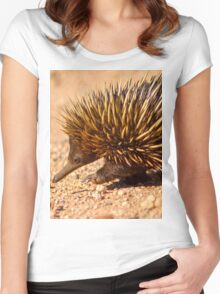 Echidna Women's Fitted Scoop T-Shirt
