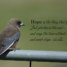 Hope is the thing with feathers... by Deborah McGrath