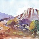 The Magaliesberg mountains  by Maree Clarkson