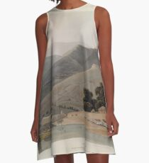 African Scenery and Animals Samuel and William Daniell 1804 0053 A Boor's House_jpg A-Line Dress