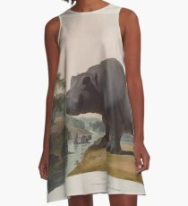 African Scenery and Animals Samuel and William Daniell 1804 0041 The Hippopotamus_jpg A-Line Dress