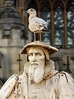 Richard Hooker Statue With Young Seagull by widdy170