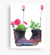 Old shoes with flowers Canvas Print
