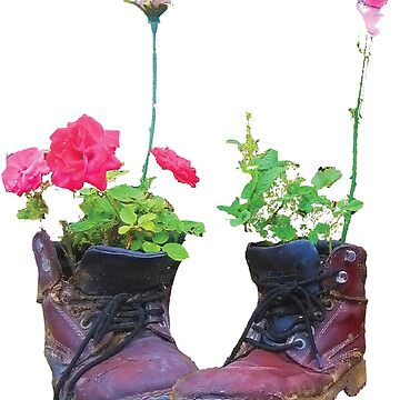 Old shoes with flowers by Hujer