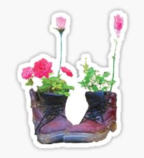 Old shoes with flowers Sticker