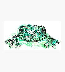Zentangle stylized frog with abstract  colorful grunge background Photographic Print