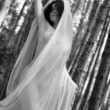 Beautiful nude woman in white shawl in forest Black and white art photo print by AwenArtPrints
