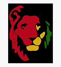 Lion Rasta Reggae Photographic Print