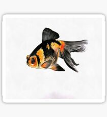 Demekin Goldfish Isolated On White Sticker