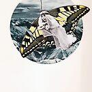 Fly Butterfly by jiriki