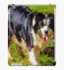 Border Collie - Color iPad Case/Skin