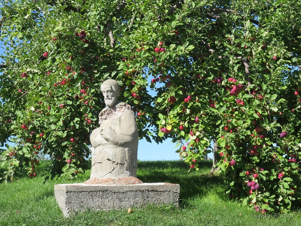 Guardian of the Apple Trees by Sandra Fortier