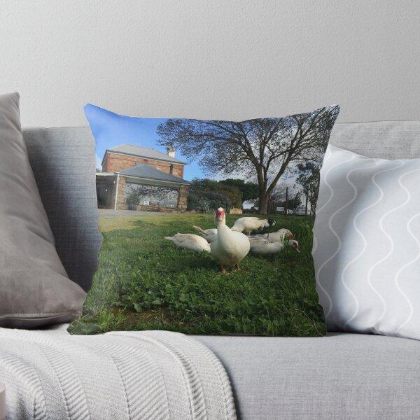 Quack Patrol - Ducks in the Vineyard Throw Pillow