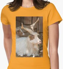 moose at the zoo Womens Fitted T-Shirt