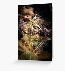 Back to Nature Greeting Card