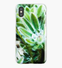 Lupine Leaves Photography Print iPhone Case/Skin