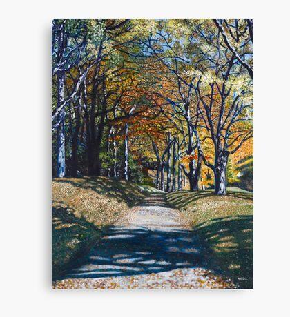 'Autumn Trail ( Bass Lake, Blowing Rock, NC)' Canvas Print