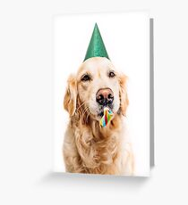 Golden retriever dressed up for a birthday Greeting Card