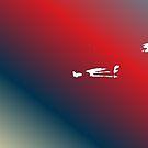 Red Beam by Ashoka Chowta