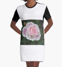 Blushing Pink Iceberg Graphic T-Shirt Dress
