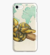 Reticulated Python iPhone Case/Skin