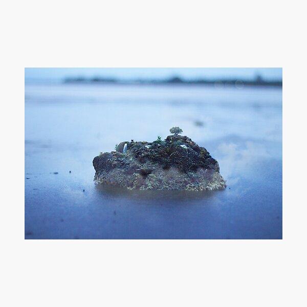 Little Island Photographic Print