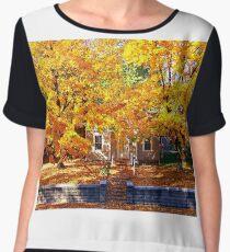 Golden Days of Autumn Chiffon Top