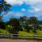 Mount Gulaga from Central Tilba NSW by Yukondick