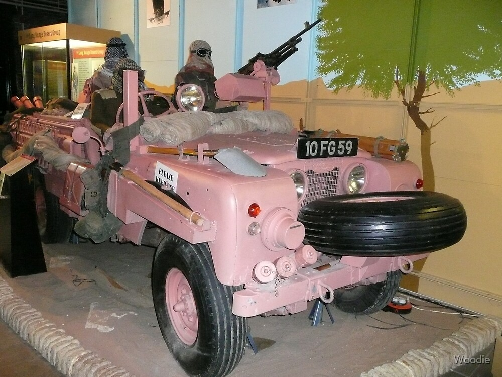 """SAS """"Pink"""" camouflage by Woodie"""