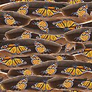 Monarch Butterfly Migration by Elaine Maisel