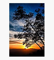 The Sunset Tree (Limited Edition - 100 available) Photographic Print