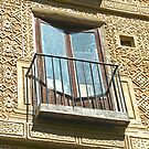 Segovia, Spain - Window by Michelle Falcony