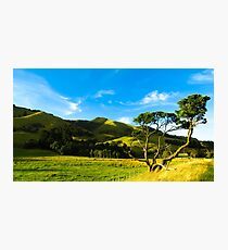 Rural Wairarapa Photographic Print