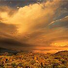 Sunrise stormfront, Tibooburra by Kevin McGennan